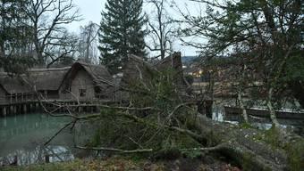 Der Sturm Burglind führte zu Schäden.