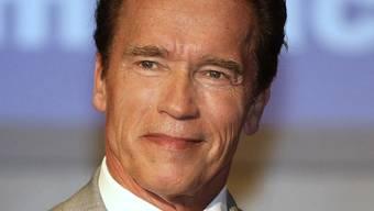 Schwarzenegger soll bei der Eröffnung des Museums dabei sein (Archiv)
