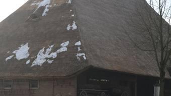 In einem halben Jahr ist das Dach einheitlich grau-schwarz. lbr