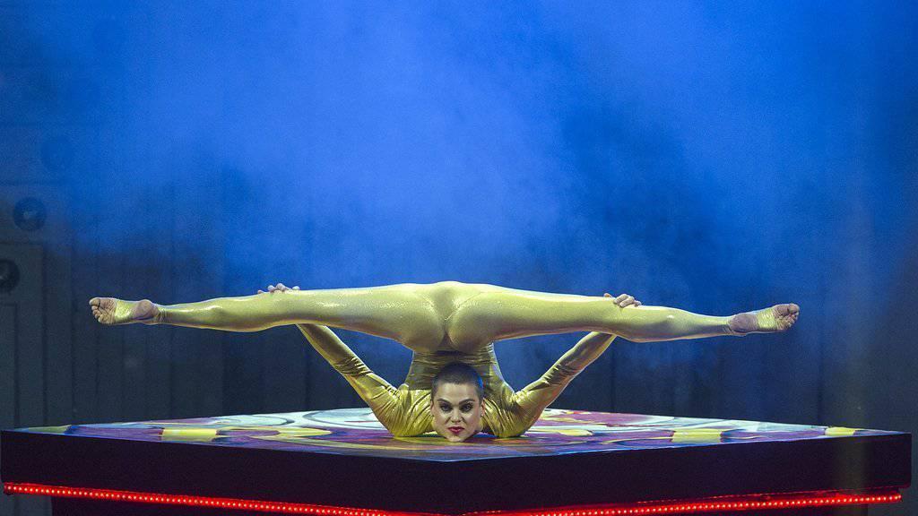 Nina Burri verrenkte sich auch für DJ Bobos Show «Circus» (Archiv)