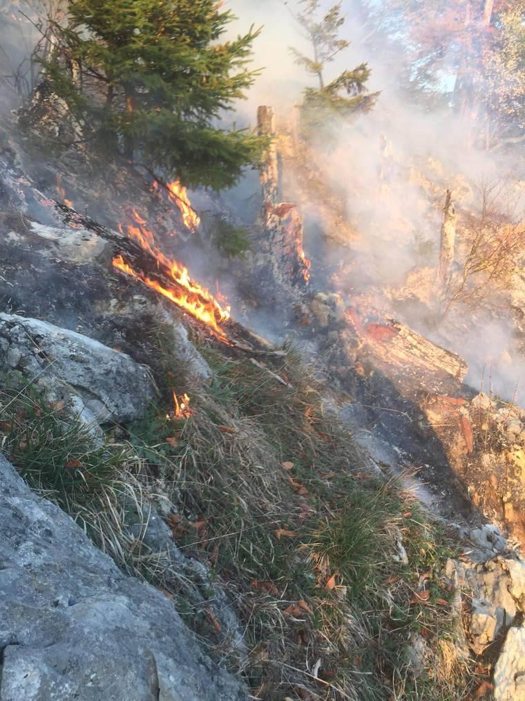 Die Feuerwehr konnte den Brand mithilfe von zwei Helikoptern löschen (im Video). Bild: Kantonspolizei St.Gallen