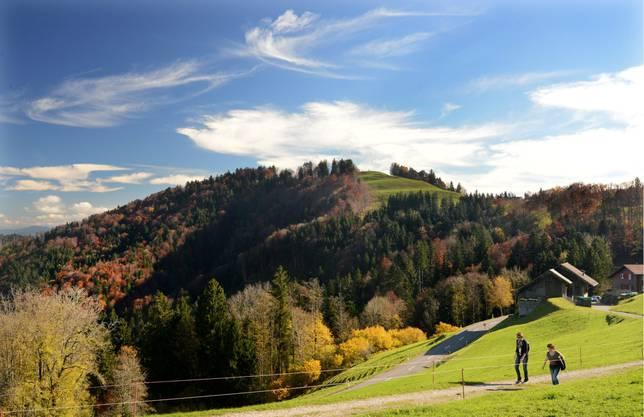 Spaziergängerinnen geniessen das schöne Herbstwetter auf der Passhöhe Hulftegg im Zürcher Oberland. (KEYSTONE/Steffen Schmidt)