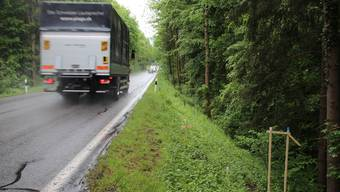 Die kleinen Bauprofile (rechts) für die Erstellung des geplanten Radwegs Bremgarten–Wohlen bleiben noch einige Monate stehen. ARchiv/Rob