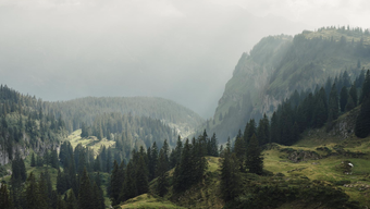 Echotopos Schweiz, http://www.echotopos.ch und App (iPhone und Android)