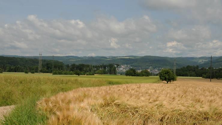 Das Gebiet Hard in Klingnau, wo Landwirtschaft betrieben wird. Hier befindet sich ein Kiesvorkommen.