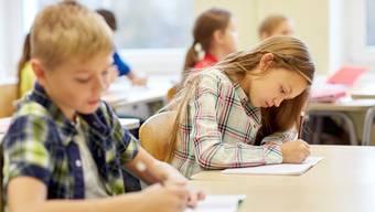 Primarschullehrpersonen an das Erziehungsdepartement: «Der vorgesehene Check wird nicht valide, weil er nicht misst, was er messen soll und somit fragwürdige Ergebnisse liefert.» (Symbolbild)