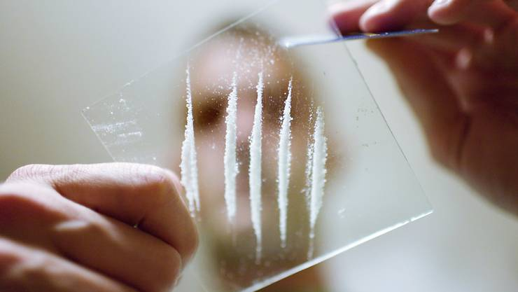 "Drogen sollen gemäss neuem Parteiprogramm ""grundsätzlich"" nicht verboten, d.h. auch «harte» Drogen wie Kokain."