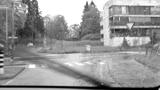 Auto im Gebüsch