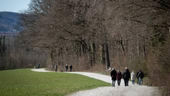 Während die Momente in freier Natur für den Menschen ein Genuss sind, leiden Flora und Fauna unter dem ungewohnten Besucherandrang.(Symbolbild)