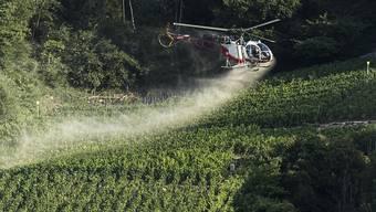 Schweizer Rebbauern setzen mehr verschiedene Pestizide ein als ihre Kollegen im Ausland. Im Bild ein Helikopter, der im August 2016 Reben bei Siders VS gegen Ungeziefer und Pilzbefall besprüht.
