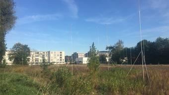 2020 soll die zweite Etappe der Grossüberbauung Salmenpark fertig sein. nbo