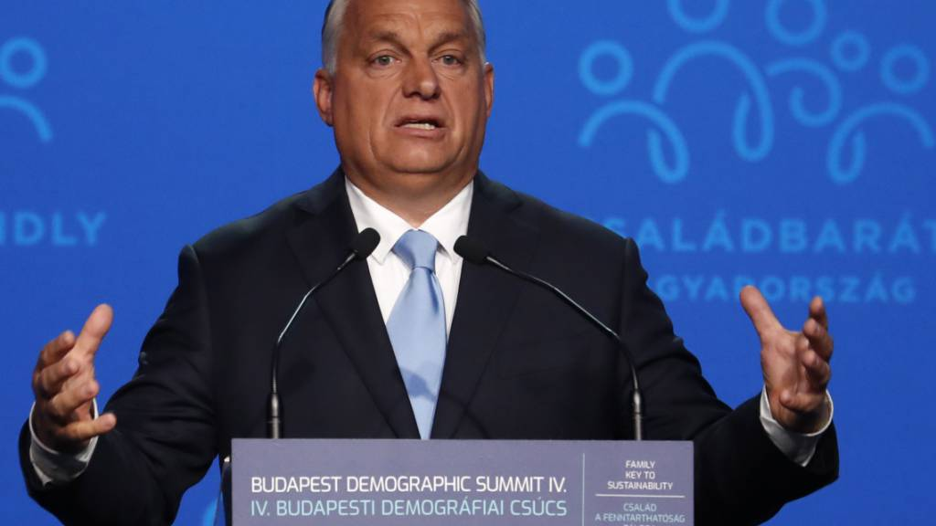 Aussenseiter voraussichtlich Herausforderer von Orban