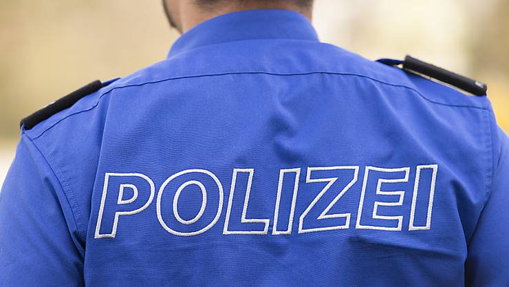 Zwei Männer verkleideten sich als Polizisten und kontrollierten im Luzerner Seetal Fahrzeuge. (Symbolbild)