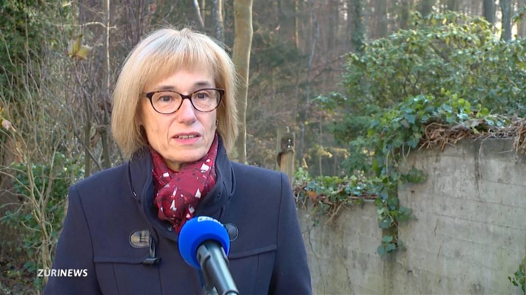 Mutiertes Coronavirus: Einschränkungen für England-Reisende auch in Schweiz gefordert