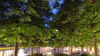 Der Tanz der Bäume auf dem Theaterplatz Basel soll die Menschen irritieren.