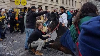 Gleich zwei Pferde rutschen an der Basler Fasnacht aus