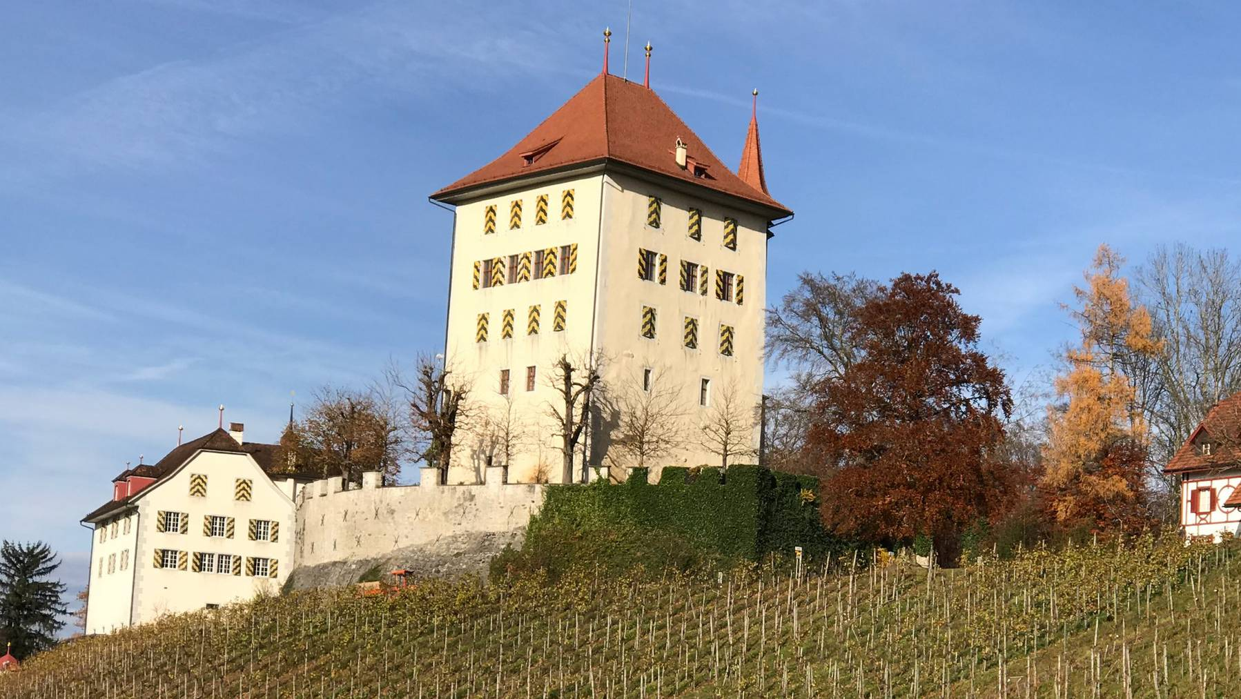 Schloss Heidegg mit dem Rebberg.