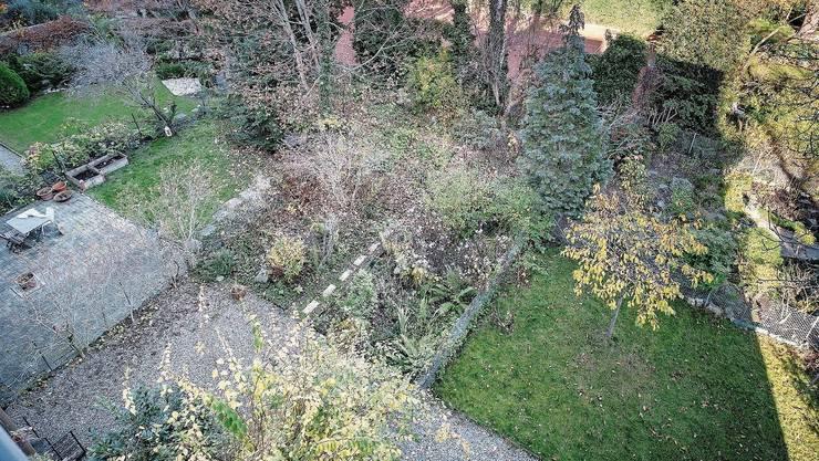 In diesem Innenhof im Gundeldingerquartier soll das Tiny House gebaut werden.