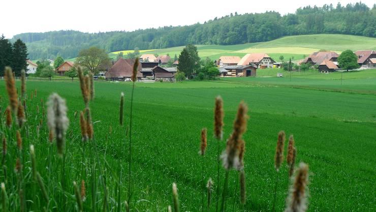 Blick auf Lüterkofen-Ichertswil. (Archiv)