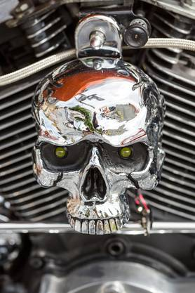 Christoph Stirnimann aus Beinwil am See hat im Februar einen Preis an der Swiss Moto in Zürich für seine Harley gewonnen.
