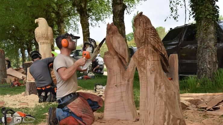 Es ist erstaunlich, was aus einem Stück Holz alles entstehen kann.