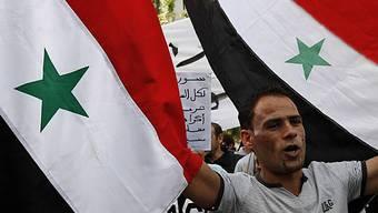 Ein Syrer protestiert in Zypern gegen Assad (Archiv)
