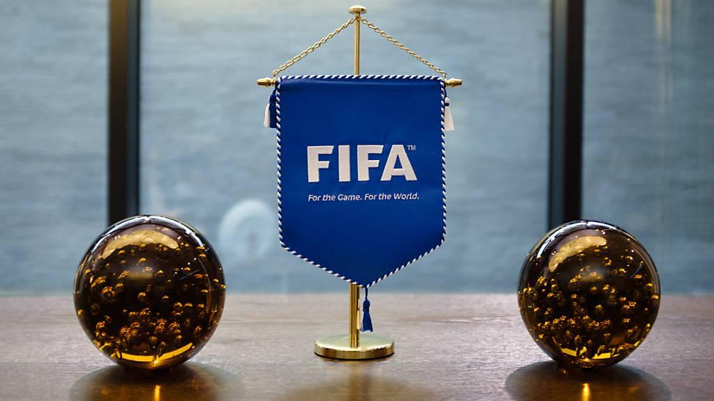 FIFA-Berater schlagen Ausrichtung der WM alle zwei Jahre vor