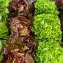 Wegen Corona für 1 Franken zu verkaufen: Die schönen frischen Salate von Friedli-Gemüse.