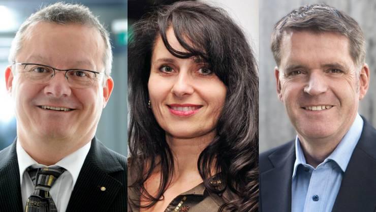 Mario Delvecchio, Andrea Libardi oder Daniel Schneider –  das sind die möglichen Kandidaten der FDP.