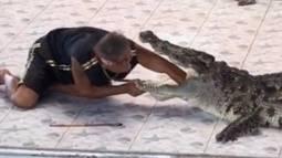 Schreckmoment für Zuschauer: Kroko-Trainer gebissen!