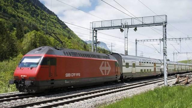 Tier stört Bahnverkehr (Symbolbild)