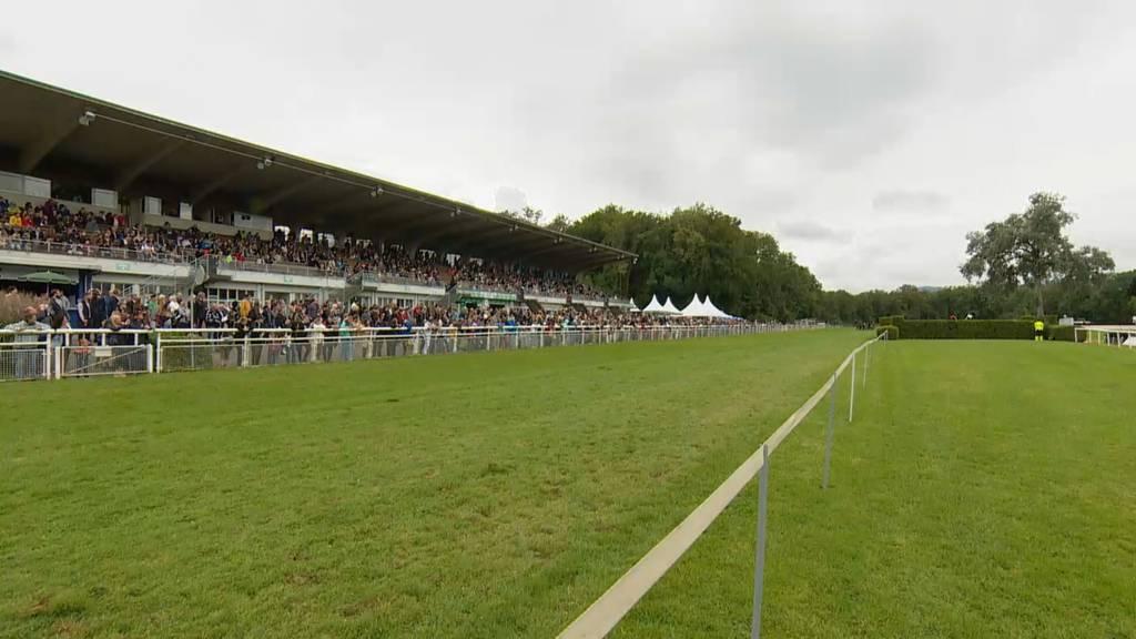 Aargau TopSport: Pferderennen Aarau