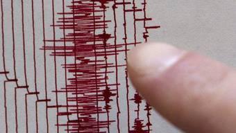 Seismographen haben ein Erdbeben in Italien aufgezeichnet. (Symbolbild)