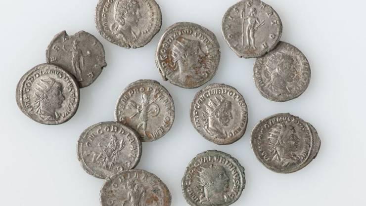 Auf dem Zugerberg ist ein gut in einem Wald versteckter römischer Münzschatz entdeckt worden.