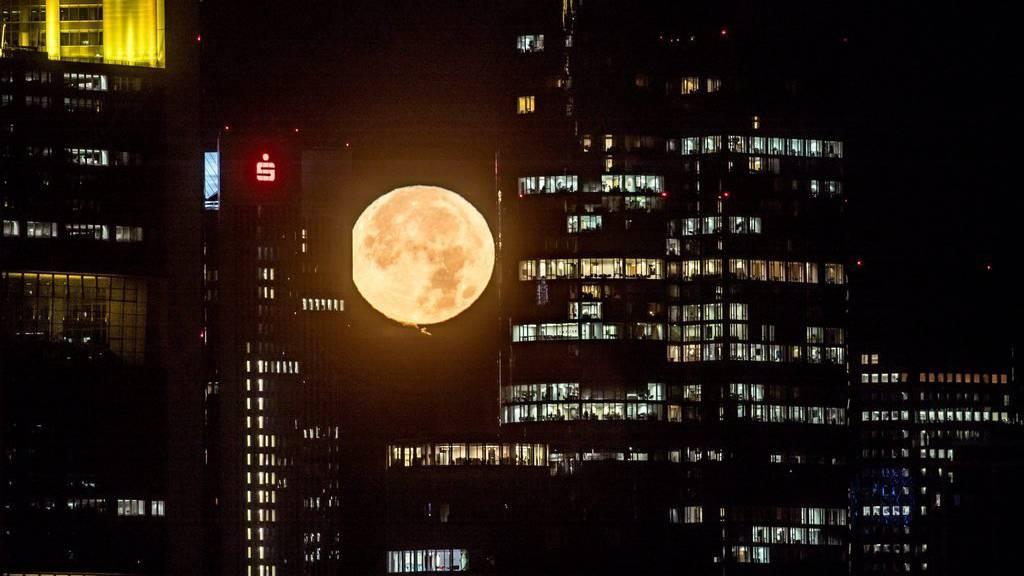 Der Mond, wie er heute morgen über Frankfurt aufging.