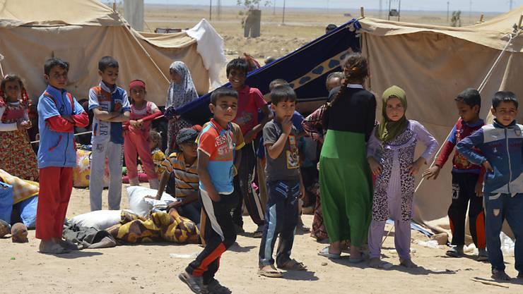 Kinder aus Falludscha in einem Lager für Vertriebene im Irak.