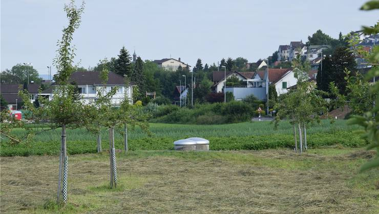 Vorübergehend stillgelegt: das Grundwasserpumpwerk Eichholz.