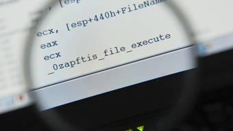 In Zukunft ist auch der Staat ein Hacker - im Kampf gegen Kriminelle (Archiv)