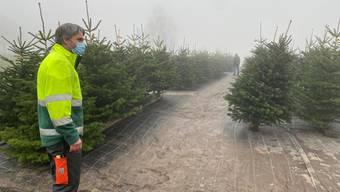Hanspeter Huber und die Agroservice GmbH züchten Christbäume im Limmattal.