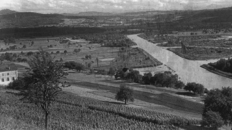 Das Bild wurde zur Zeit der Limmatkorrektion gegen Ende des 19. Jahrhunderts aufgenommen und zeigt im Vordergrund Reben bei Oetwil.
