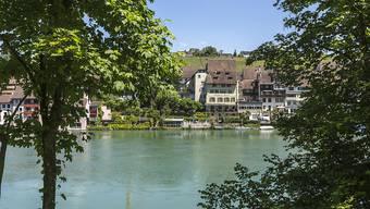 Der Rhein bei Eglisau ZH: Hier verlor am Mittwoch ein Knabe nach einem Sprung von einem Baum sein Leben. (Archivbild)