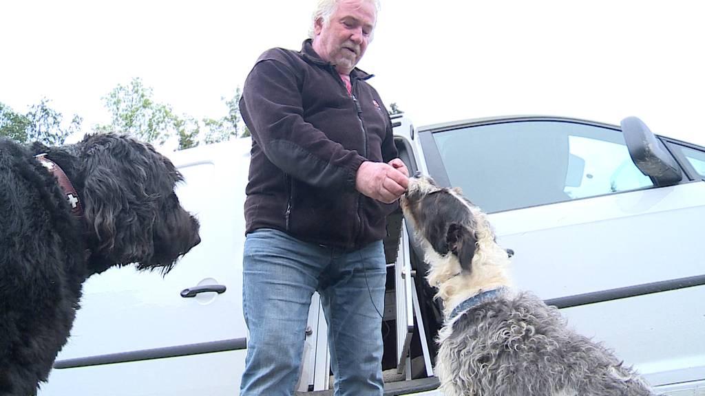 Spezialist für schwierige Hunde