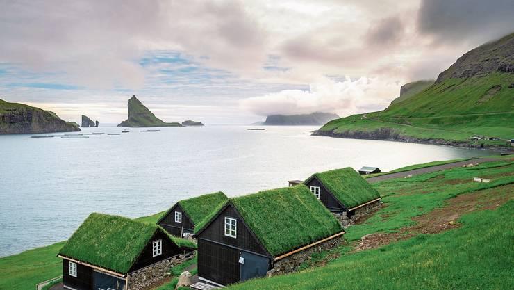 Eine grandiose Natur und Abgeschiedenheit bieten die Färöer. Und viel Regen. Dafür grünt es – selbst auf den Hausdächern. Bild: Getty Images