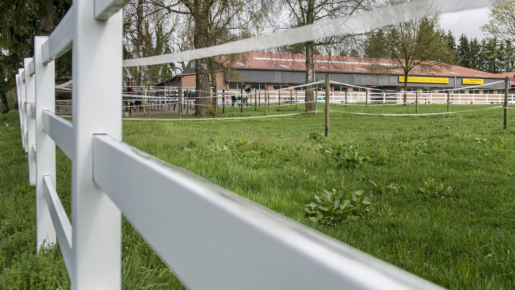 Der Mann, der alleine drei Personen aus dem Thurgau fast 60'000 Franken schuldet, betreibt einen Reitstall.