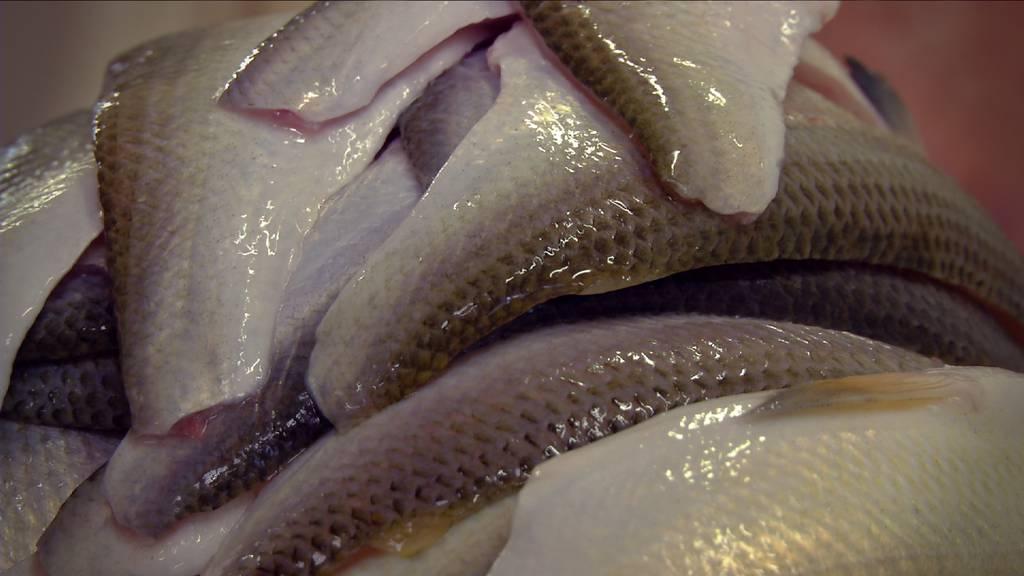 Fischdeklaration