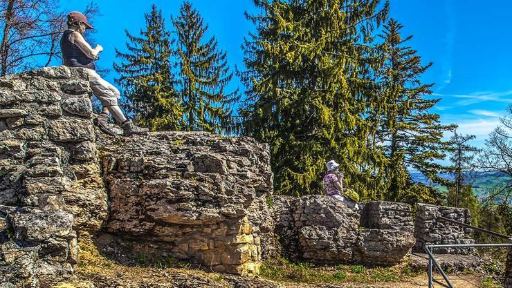 Die Burgruine Alt-Tierstein liegt oberhalb von Gipf-Oberfrick und bietet eine weite Aussicht über das Fricktal. Die Burg gilt als die Stammburg der Grafen von Tierstein. Bis zu ihrer Aufgabe im 15. Jahrhundert blieb sie in deren Besitz.