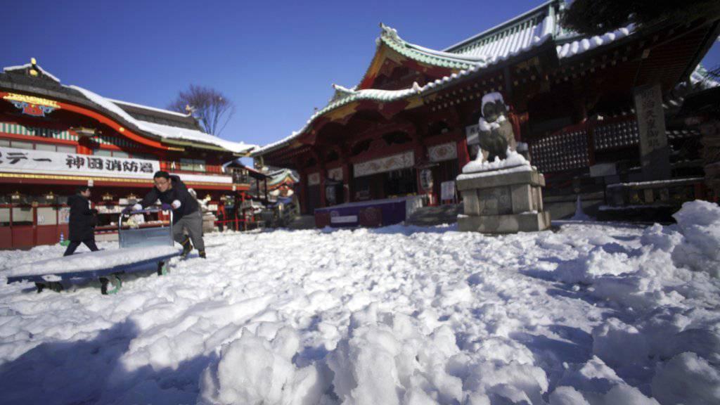Der Schnee bedeckt einen Schrein in Tokio - und sorgt auf einigen Strassen Japans für ein Chaos. (Archiv)