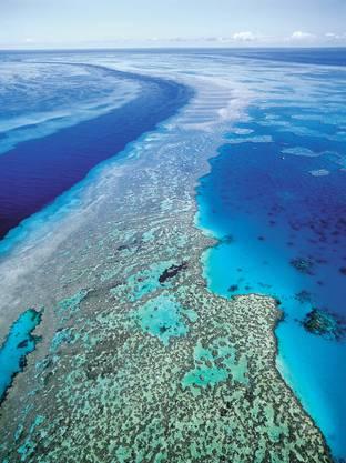 Das 2300 Kilometer lange Barrier Reef ist das längste Reef der Welt und eine der wichtigsten Touristenattraktionen Australiens.