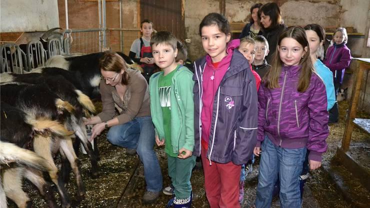 Sabine Kupferschmid (links) zeigt den Kids, wie die Ziegen richtig gemolken werden.