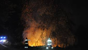 Die Feuerwehr hatte den Brand in Oberbuchsiten schnell unter Kontrolle.